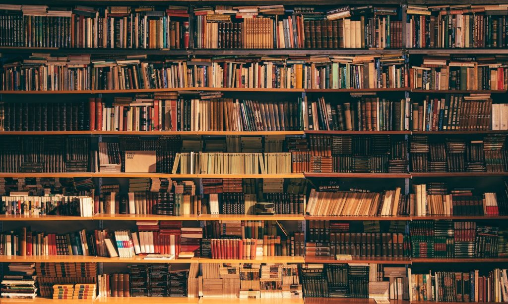 Knygų įsigijimas internetinėse parduotuvėse